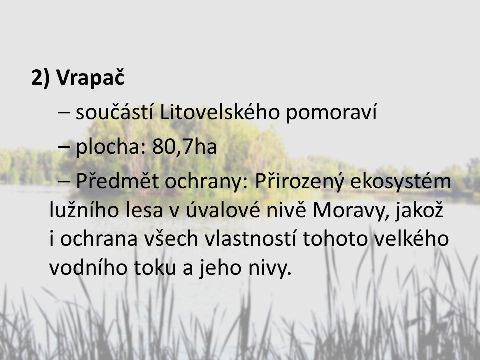 2) Vrapač – součástí Litovelského pomoraví – plocha: 80,7ha – Předmět ochrany: Přirozený ekosystém lužního lesa v úvalové nivě Moravy, jakož i ochrana