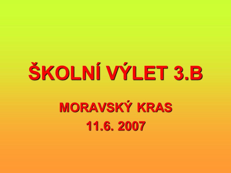 ŠKOLNÍ VÝLET 3.B MORAVSKÝ KRAS 11.6. 2007