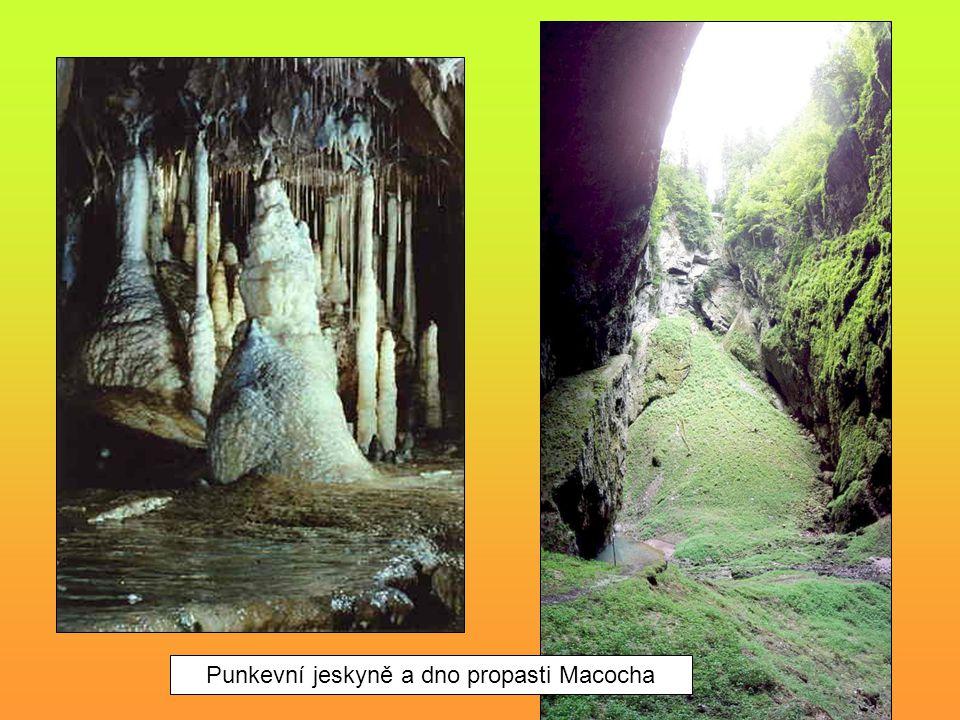 Punkevní jeskyně a dno propasti Macocha