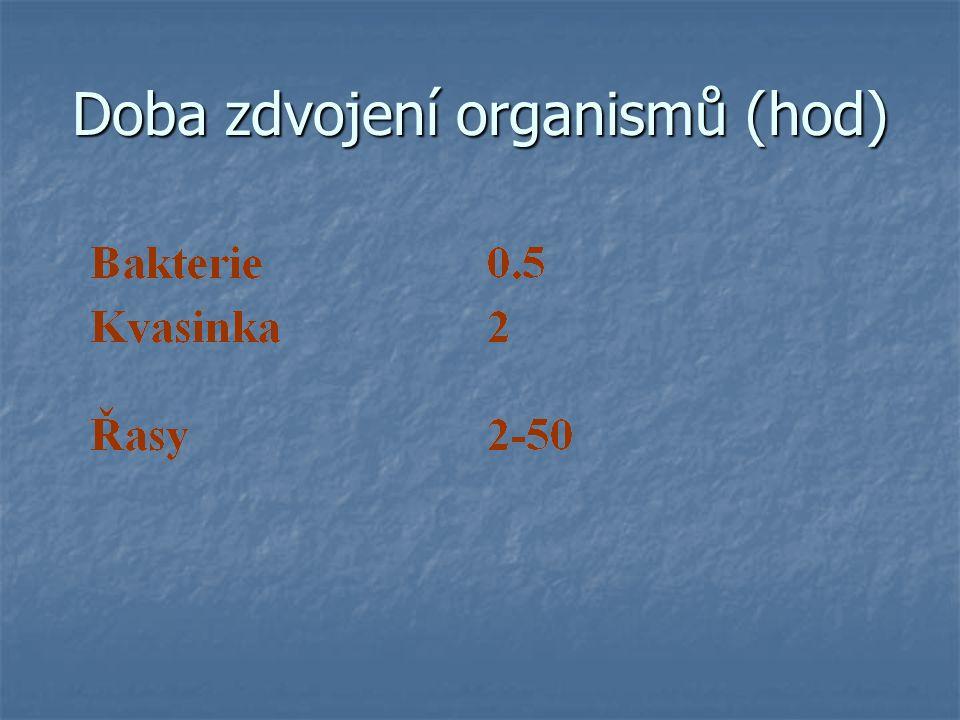 Velikost buněk prokaryot a eukaryot