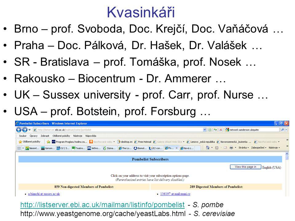 Kvasinkáři Brno – prof.Svoboda, Doc. Krejčí, Doc.