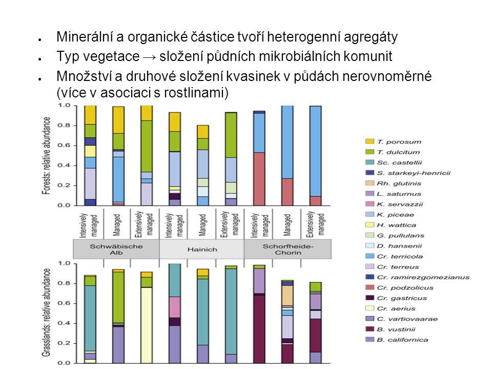 ● Minerální a organické částice tvoří heterogenní agregáty ● Typ vegetace → složení půdních mikrobiálních komunit ● Množství a druhové složení kvasinek v půdách nerovnoměrné (více v asociaci s rostlinami)
