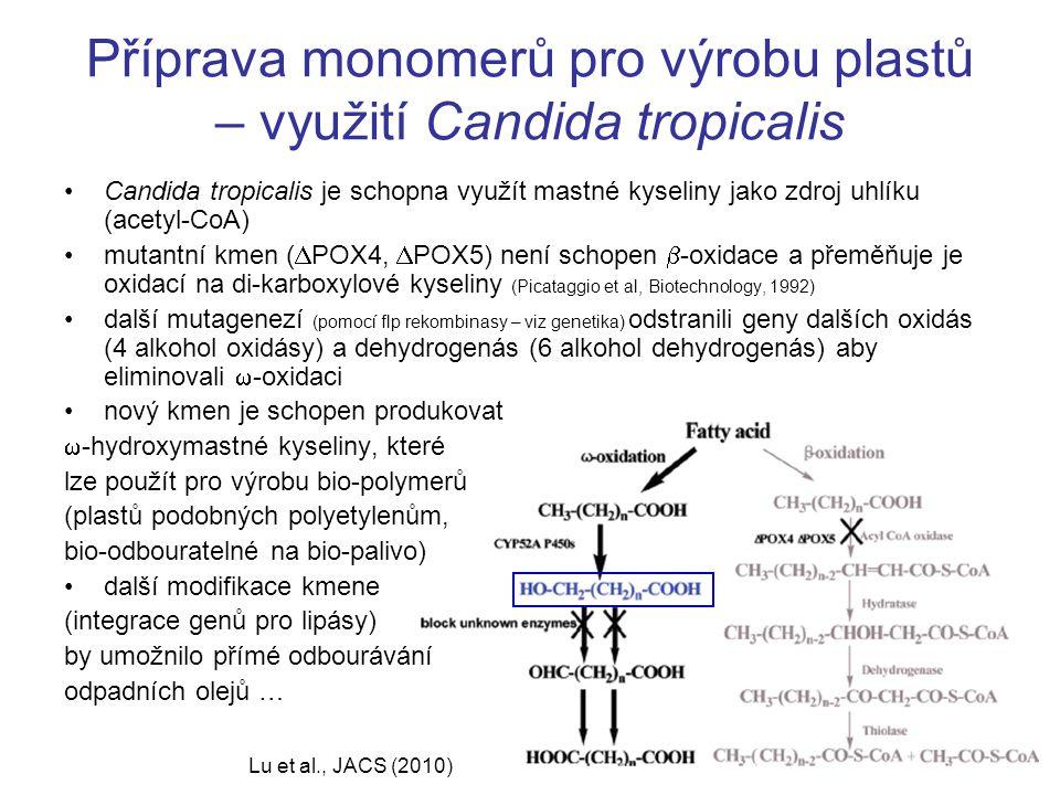 Příprava monomerů pro výrobu plastů – využití Candida tropicalis Lu et al., JACS (2010) Candida tropicalis je schopna využít mastné kyseliny jako zdroj uhlíku (acetyl-CoA) mutantní kmen (  POX4,  POX5) není schopen  -oxidace a přeměňuje je oxidací na di-karboxylové kyseliny (Picataggio et al, Biotechnology, 1992) další mutagenezí (pomocí flp rekombinasy – viz genetika) odstranili geny dalších oxidás (4 alkohol oxidásy) a dehydrogenás (6 alkohol dehydrogenás) aby eliminovali  -oxidaci nový kmen je schopen produkovat  -hydroxymastné kyseliny, které lze použít pro výrobu bio-polymerů (plastů podobných polyetylenům, bio-odbouratelné na bio-palivo) další modifikace kmene (integrace genů pro lipásy) by umožnilo přímé odbourávání odpadních olejů …