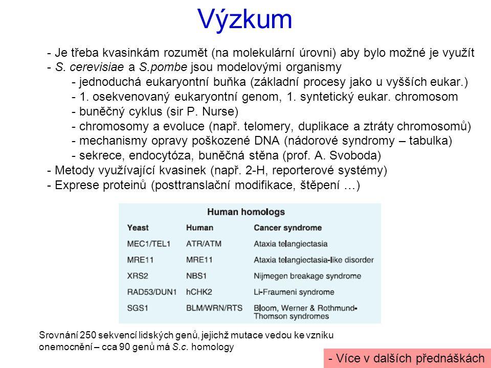 Výzkum - Je třeba kvasinkám rozumět (na molekulární úrovni) aby bylo možné je využít - S.