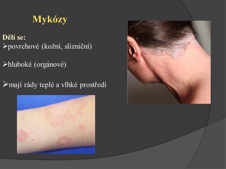 Mykózy Dělí se:  povrchové (kožní, slizniční)  hluboké (orgánové)  mají rády teplé a vlhké prostředí