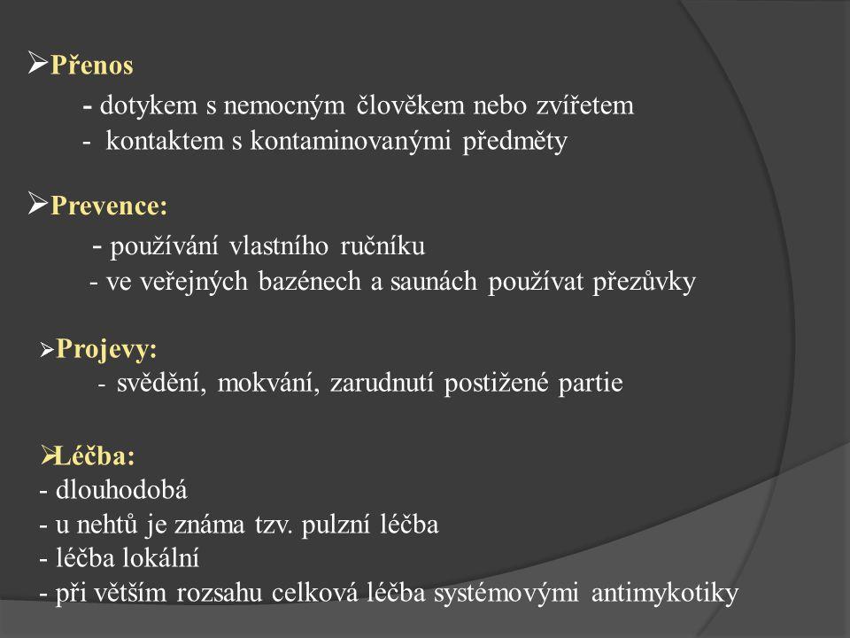  Rozhovor s MUDr.Petrem Lukešem. Alternatívní medicína [online].