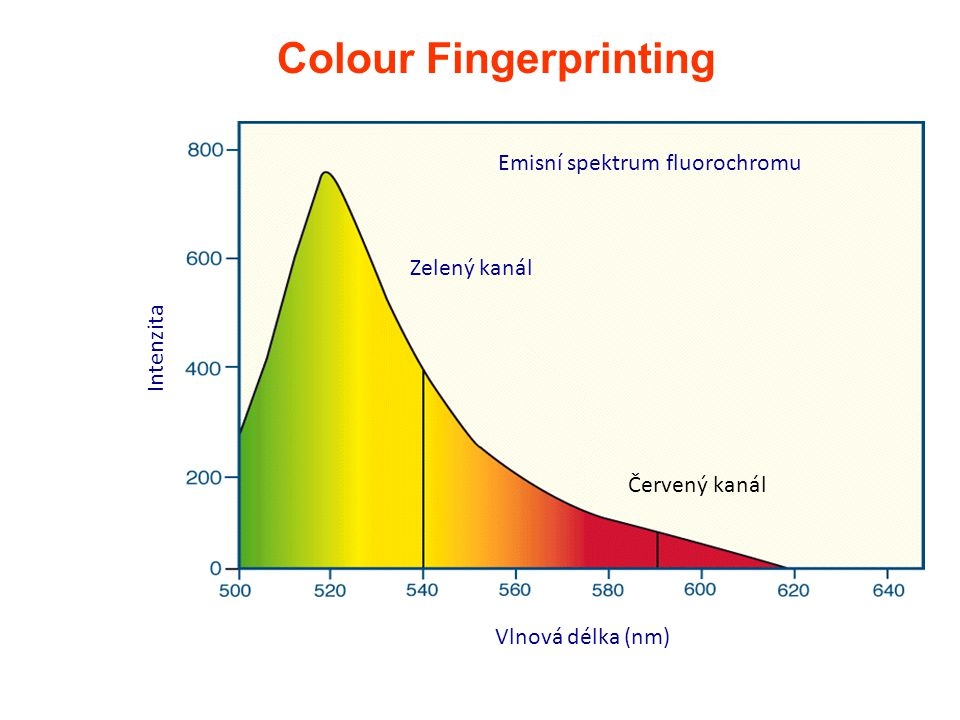Colour Fingerprinting Intenzita Vlnová délka (nm) Emisní spektrum fluorochromu Zelený kanál Červený kanál
