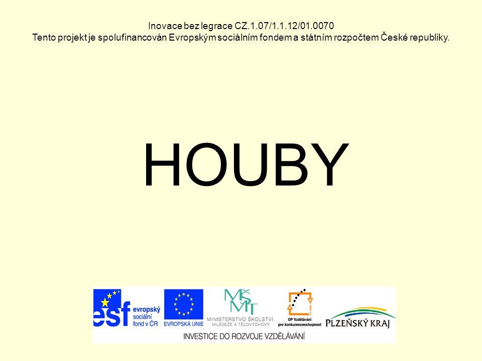 Inovace bez legrace CZ.1.07/1.1.12/01.0070 Tento projekt je spolufinancován Evropským sociálním fondem a státním rozpočtem České republiky. HOUBY