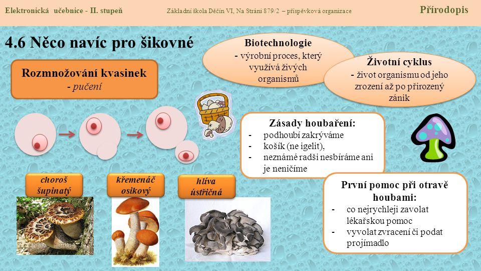 4.7 CLIL Elektronická učebnice - II.