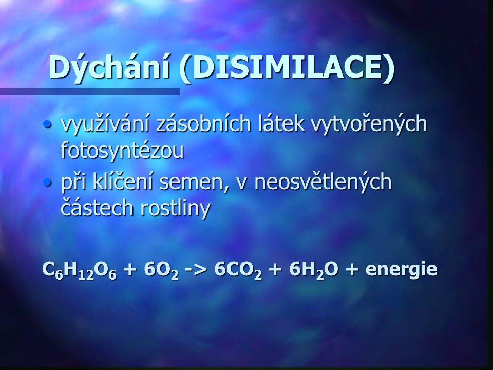 Dýchání (DISIMILACE) využívání zásobních látek vytvořených fotosyntézouvyužívání zásobních látek vytvořených fotosyntézou při klíčení semen, v neosvět
