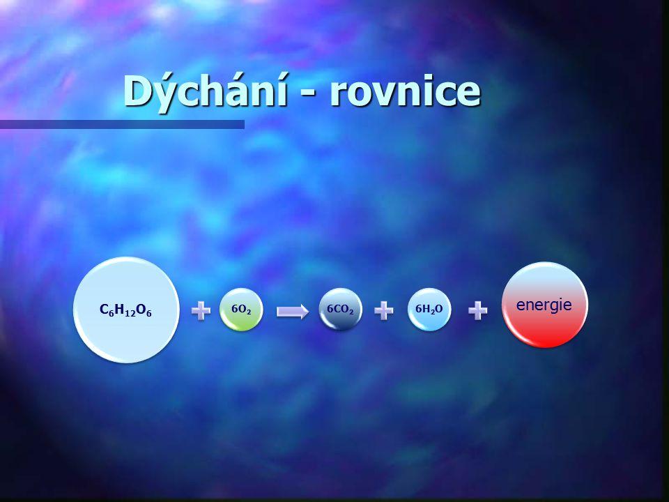 Dýchání - rovnice C6H12O 6 6O26CO2 6H2O energie