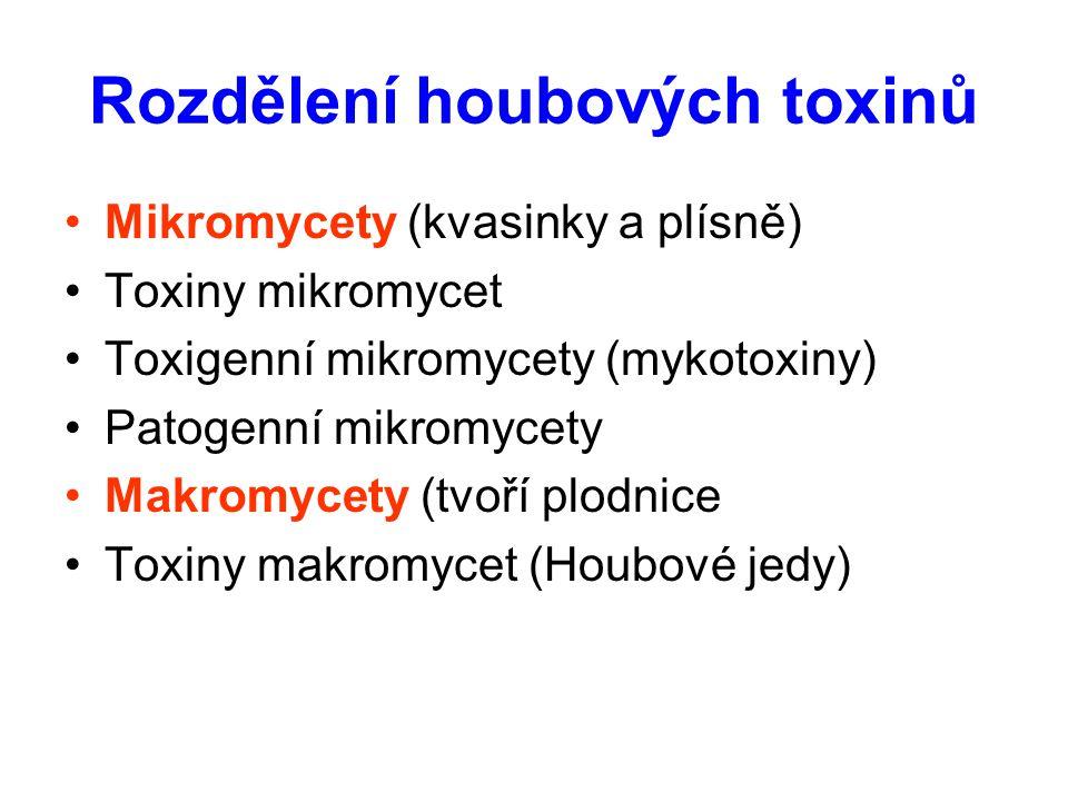 Rozdělení houbových toxinů Mikromycety (kvasinky a plísně) Toxiny mikromycet Toxigenní mikromycety (mykotoxiny) Patogenní mikromycety Makromycety (tvoří plodnice Toxiny makromycet (Houbové jedy)
