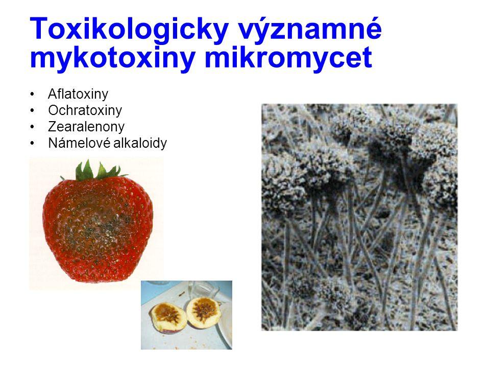 Toxikologicky významné mykotoxiny mikromycet Aflatoxiny Ochratoxiny Zearalenony Námelové alkaloidy