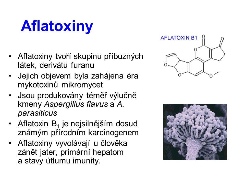 Aflatoxiny Aflatoxiny tvoří skupinu příbuzných látek, derivátů furanu Jejich objevem byla zahájena éra mykotoxinů mikromycet Jsou produkovány téměř výlučně kmeny Aspergillus flavus a A.