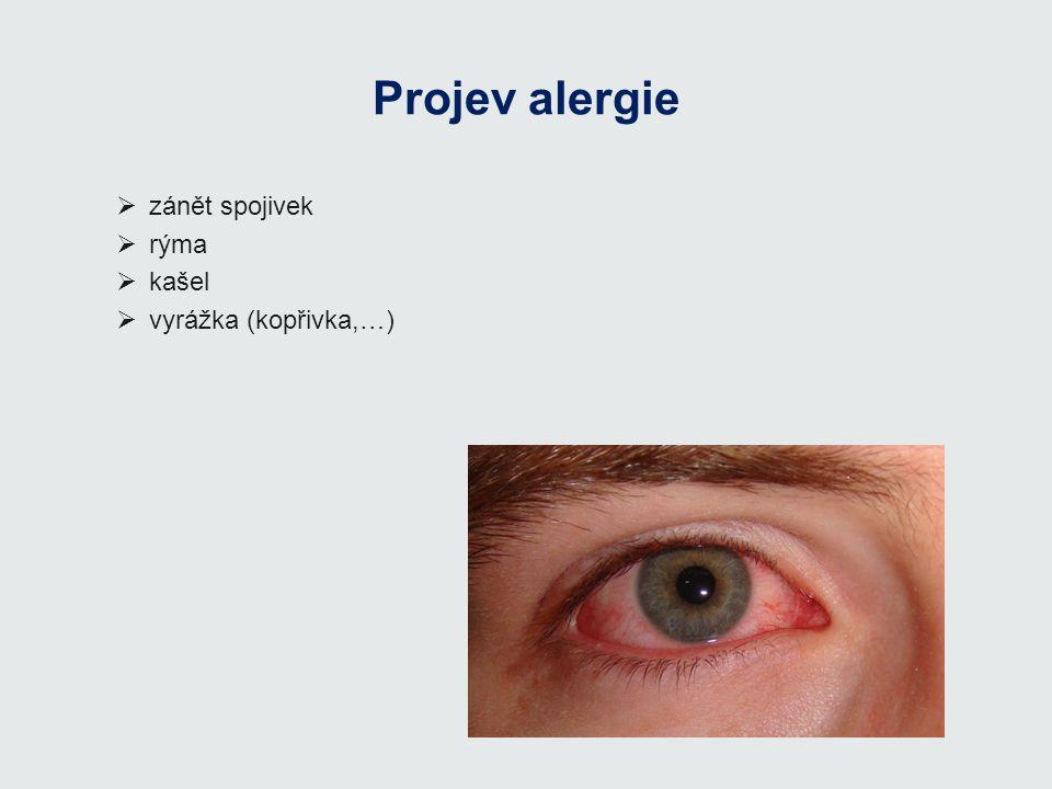 Projev alergie  zánět spojivek  rýma  kašel  vyrážka (kopřivka,…)