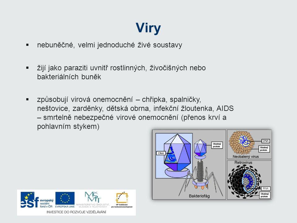 Viry  nebuněčné, velmi jednoduché živé soustavy  žijí jako paraziti uvnitř rostlinných, živočišných nebo bakteriálních buněk  způsobují virová onem