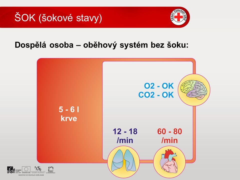 Dospělá osoba – oběhový systém bez šoku: ŠOK (šokové stavy)