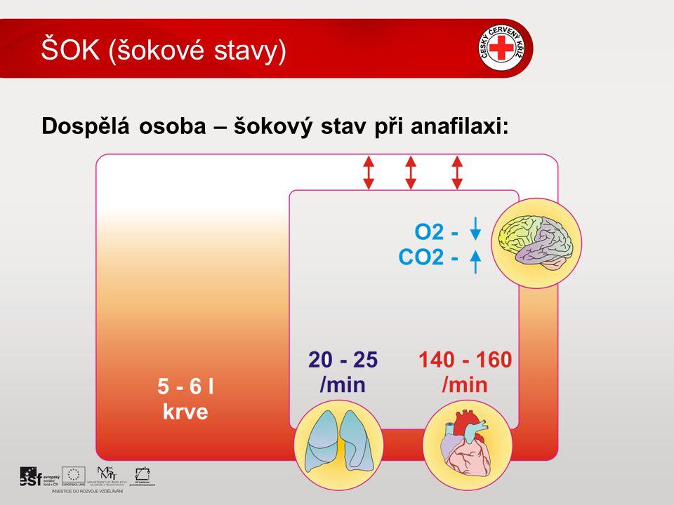 Dospělá osoba – šokový stav při anafilaxi: ŠOK (šokové stavy)