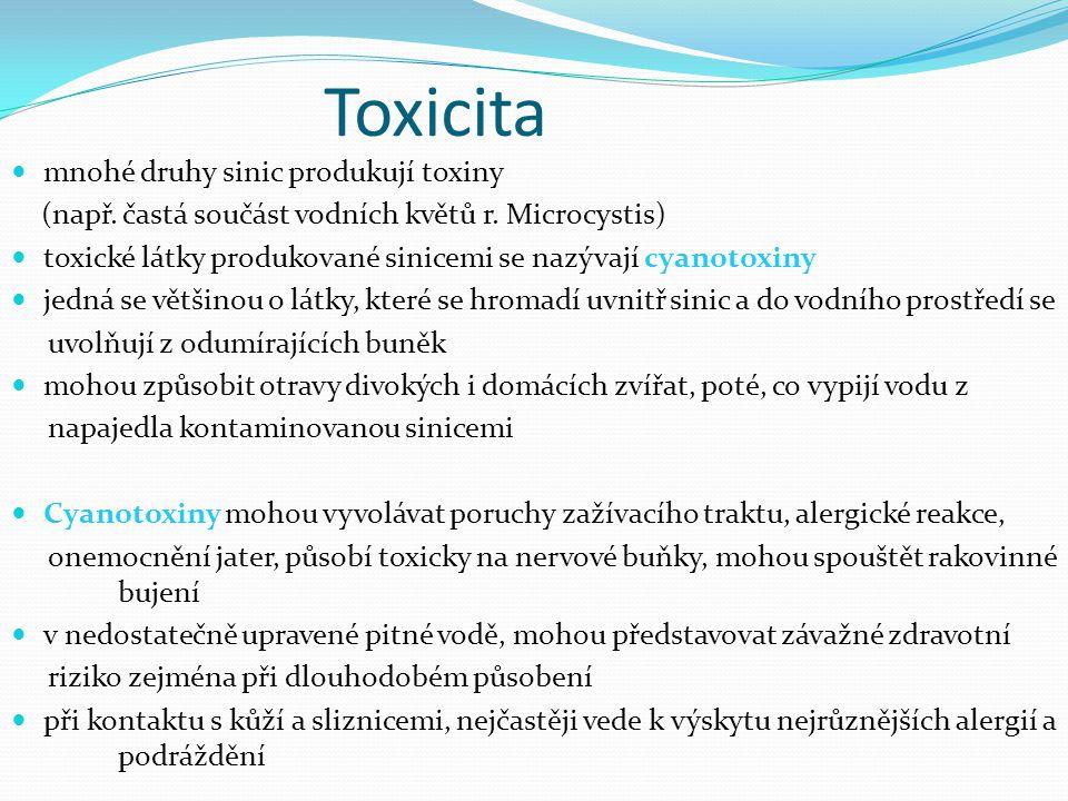 Toxicita mnohé druhy sinic produkují toxiny (např. častá součást vodních květů r. Microcystis) toxické látky produkované sinicemi se nazývají cyanotox