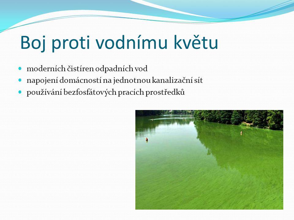 Boj proti vodnímu květu moderních čistíren odpadních vod napojení domácností na jednotnou kanalizační sít používání bezfosfátových pracích prostředků