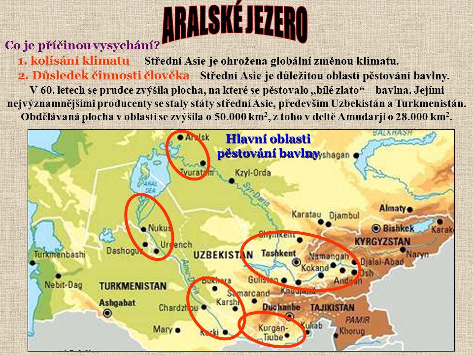 Vzniklo asi před 10.000 lety, kdy se v oblasti Aralské pánve setkaly řeky Amudarja (Oxus) a Syrdarja (Jaxartes) napájené z tajících ledovců Pamíru Ťan