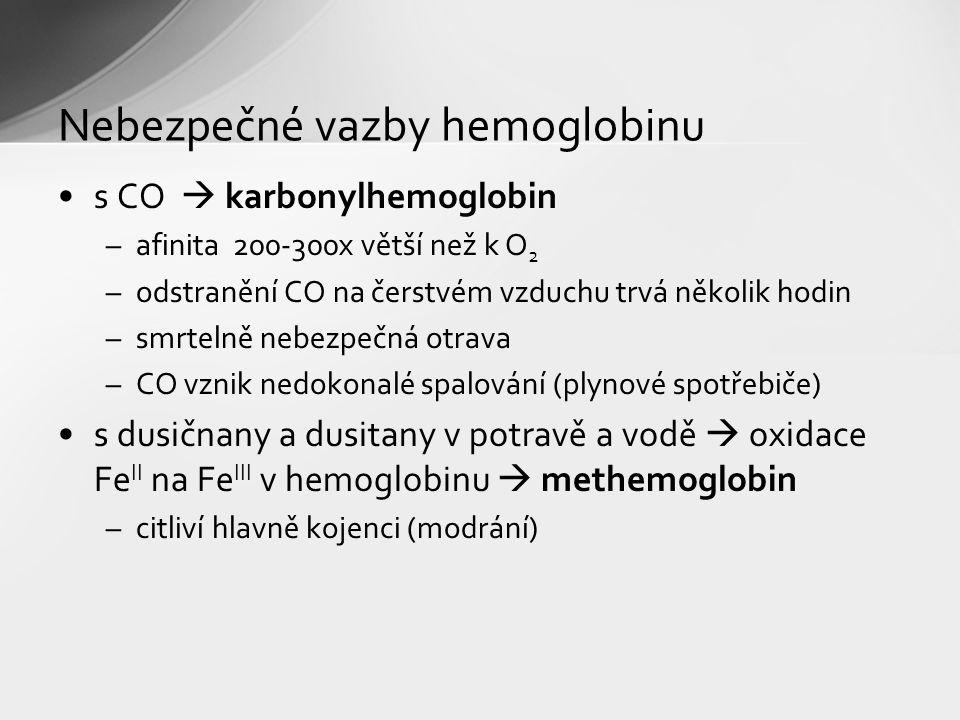 s CO  karbonylhemoglobin –afinita 200-300x větší než k O 2 –odstranění CO na čerstvém vzduchu trvá několik hodin –smrtelně nebezpečná otrava –CO vznik nedokonalé spalování (plynové spotřebiče) s dusičnany a dusitany v potravě a vodě  oxidace Fe II na Fe III v hemoglobinu  methemoglobin –citliví hlavně kojenci (modrání) Nebezpečné vazby hemoglobinu