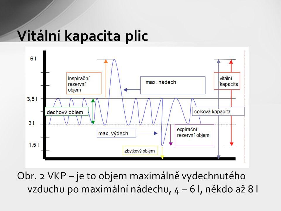 Obr. 2 VKP – je to objem maximálně vydechnutého vzduchu po maximální nádechu, 4 – 6 l, někdo až 8 l Vitální kapacita plic