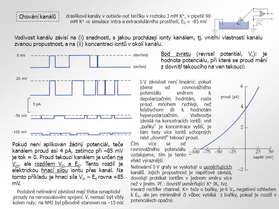 draslíkové kanály v outside-out terčíku v roztoku 3 mM K +, v pipetě 90 mM K +  simulace intra-a extracelulárního prostředí, E K = -85 mV Chování kan