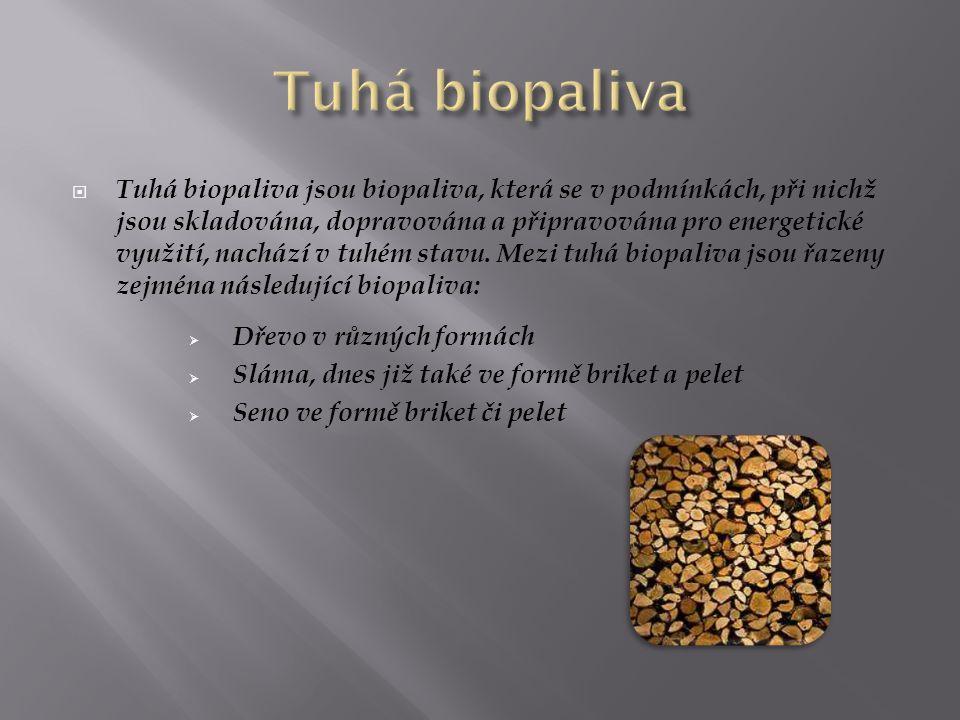  Tuhá biopaliva jsou biopaliva, která se v podmínkách, při nichž jsou skladována, dopravována a připravována pro energetické využití, nachází v tuhém