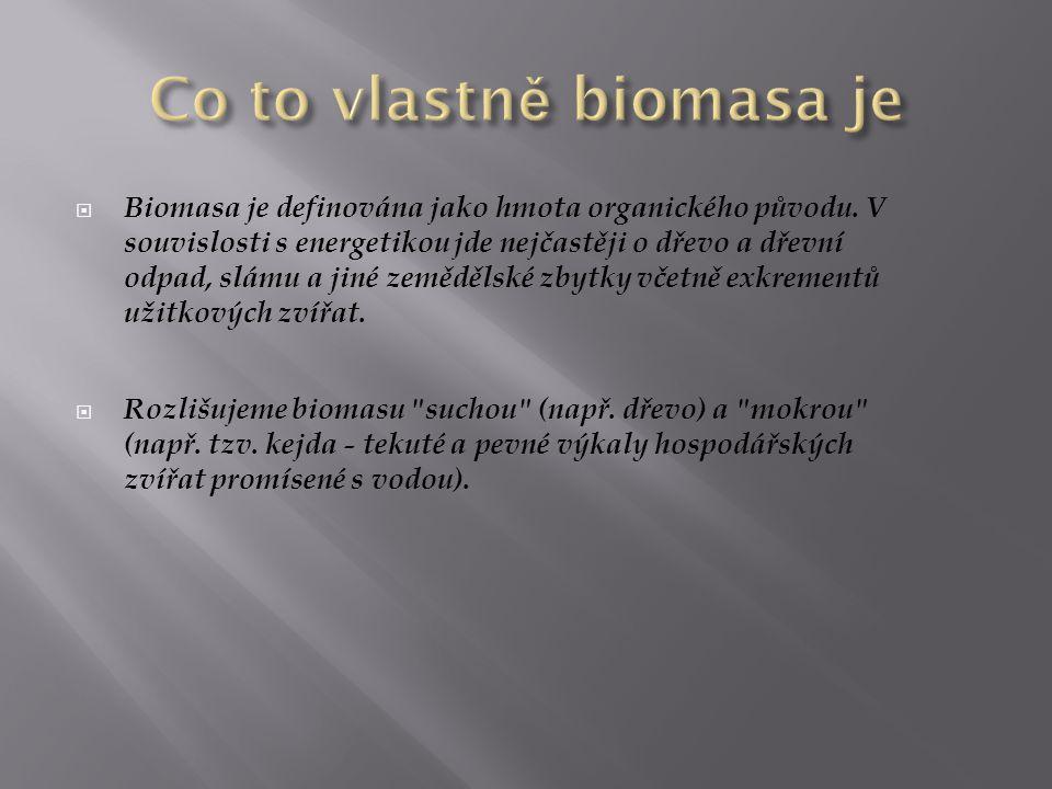 BBiomasa je definována jako hmota organického původu. V souvislosti s energetikou jde nejčastěji o dřevo a dřevní odpad, slámu a jiné zemědělské zby