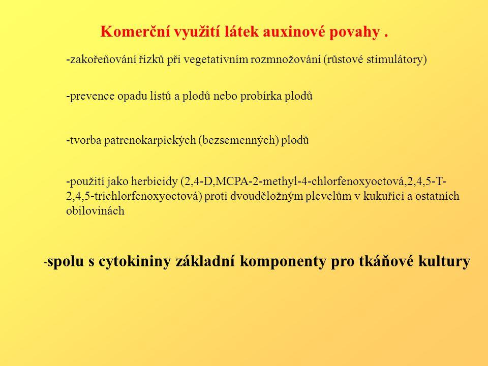 Komerční využití látek auxinové povahy. -zakořeňování řízků při vegetativním rozmnožování (růstové stimulátory) -prevence opadu listů a plodů nebo pro