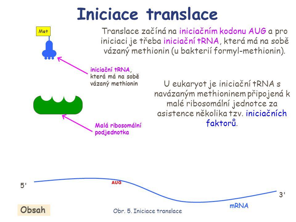Translace začíná na iniciačním kodonu AUG a pro iniciaci je třeba iniciační tRNA, která má na sobě vázaný methionin (u bakterií formyl-methionin). ini