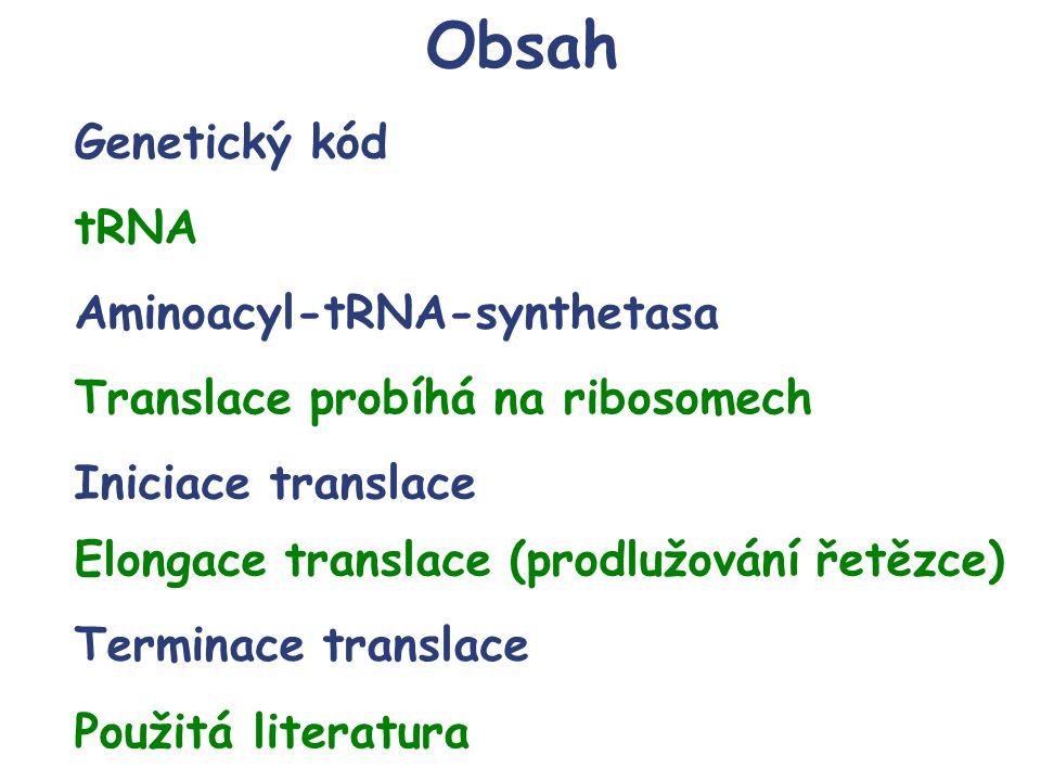 Genetický kód tRNA Aminoacyl-tRNA-synthetasa Translace probíhá na ribosomech Iniciace translace Elongace translace (prodlužování řetězce) Terminace tr