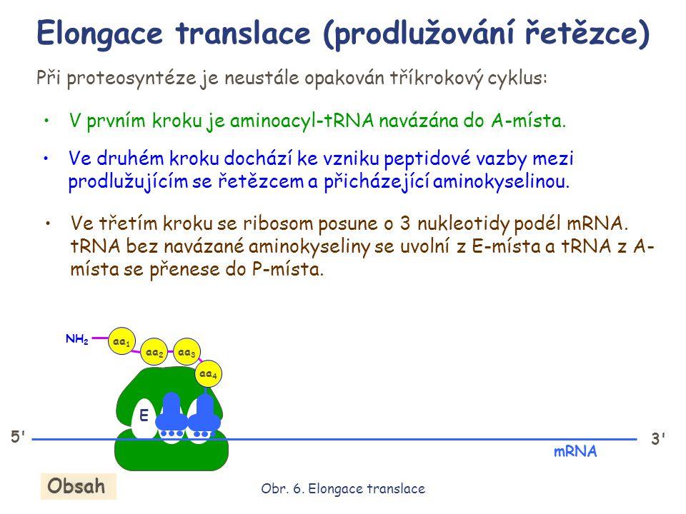 EPA Při proteosyntéze je neustále opakován tříkrokový cyklus: V prvním kroku je aminoacyl-tRNA navázána do A-místa. Ve druhém kroku dochází ke vzniku