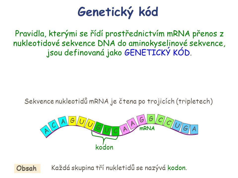 Genetický kód Pravidla, kterými se řídí prostřednictvím mRNA přenos z nukleotidové sekvence DNA do aminokyselinové sekvence, jsou definovaná jako GENE