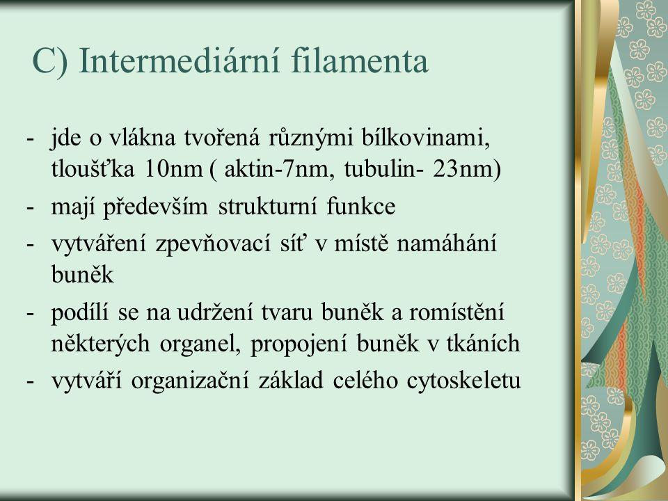 C) Intermediární filamenta -jde o vlákna tvořená různými bílkovinami, tloušťka 10nm ( aktin-7nm, tubulin- 23nm) -mají především strukturní funkce -vyt