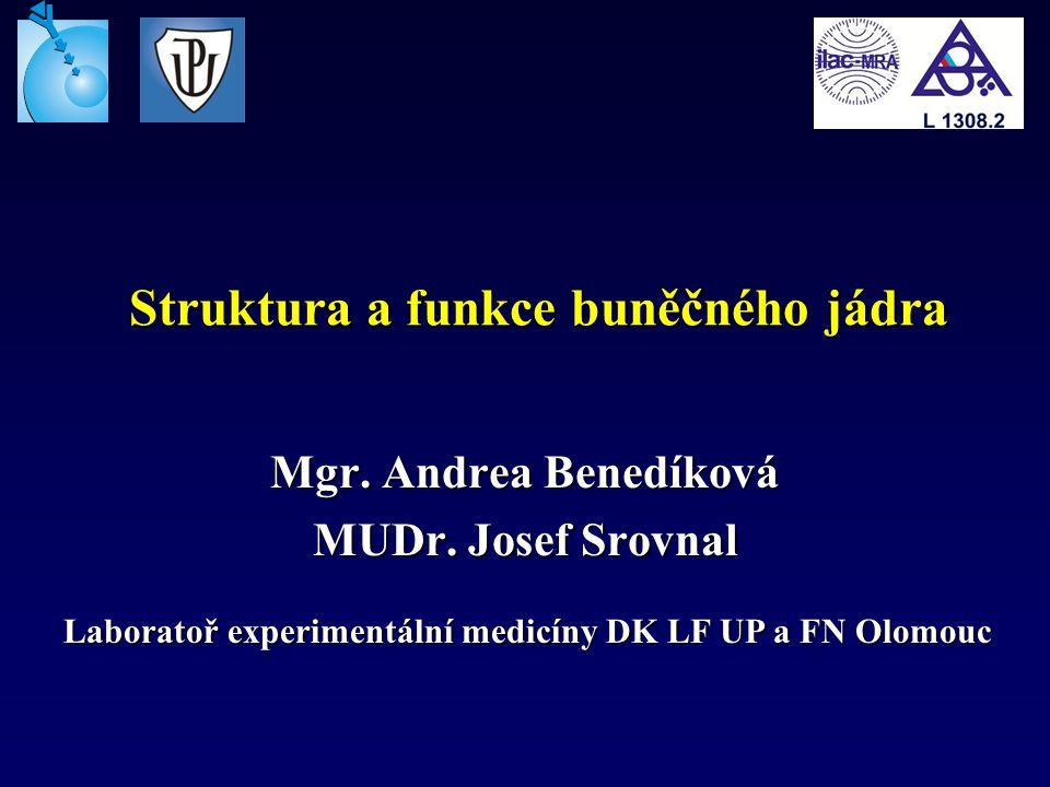Struktura a funkce buněčného jádra Mgr. Andrea Benedíková MUDr. Josef Srovnal Laboratoř experimentální medicíny DK LF UP a FN Olomouc