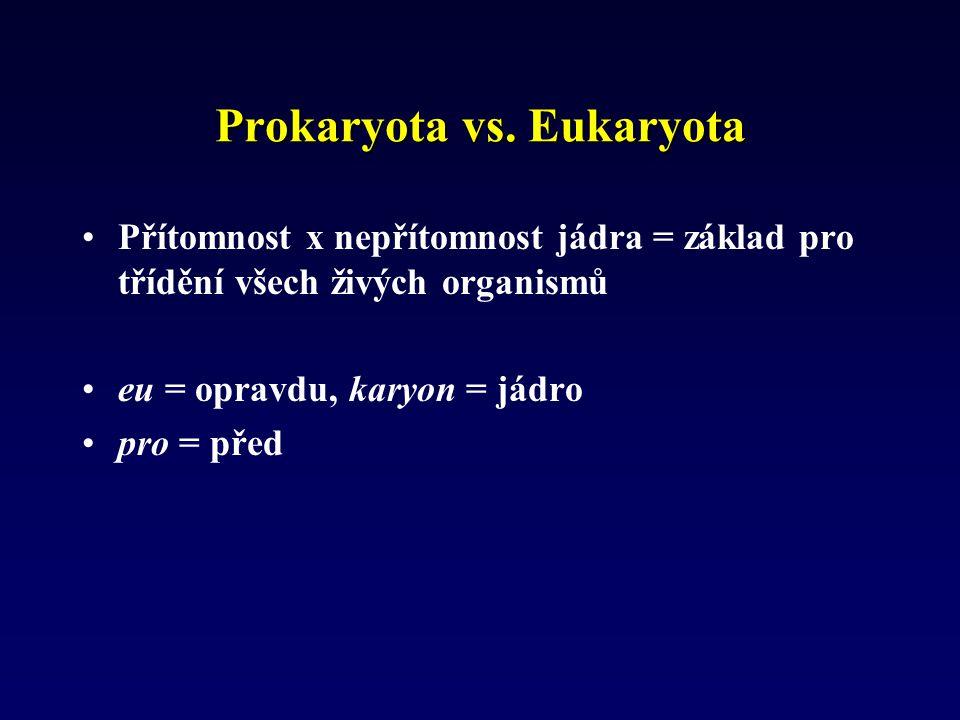 Prokaryota vs. Eukaryota Přítomnost x nepřítomnost jádra = základ pro třídění všech živých organismů eu = opravdu, karyon = jádro pro = před
