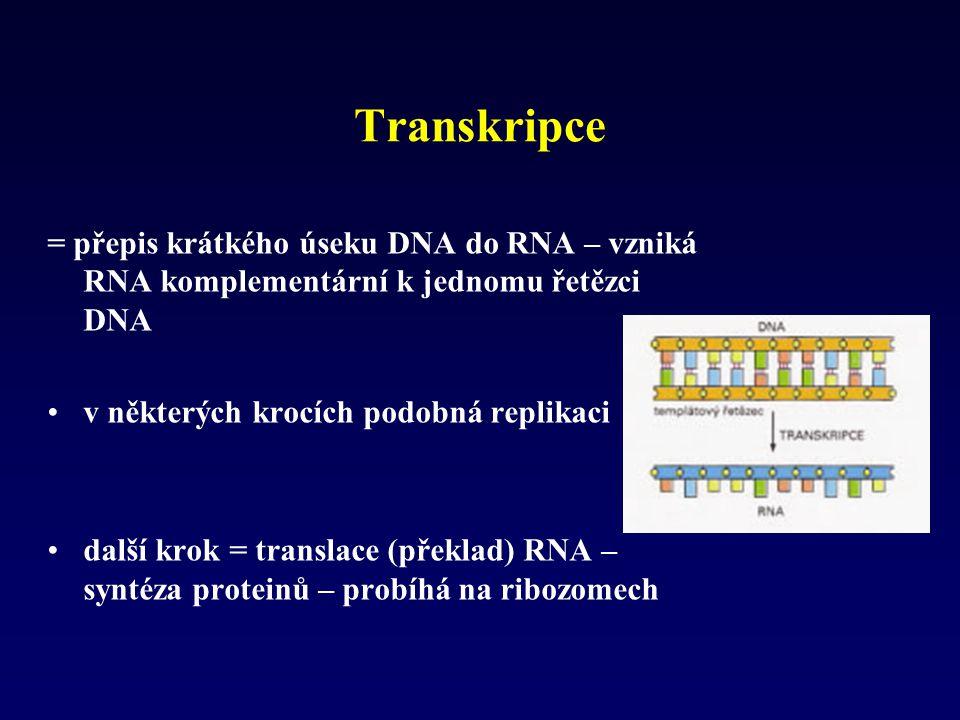 Transkripce = přepis krátkého úseku DNA do RNA – vzniká RNA komplementární k jednomu řetězci DNA v některých krocích podobná replikaci další krok = tr
