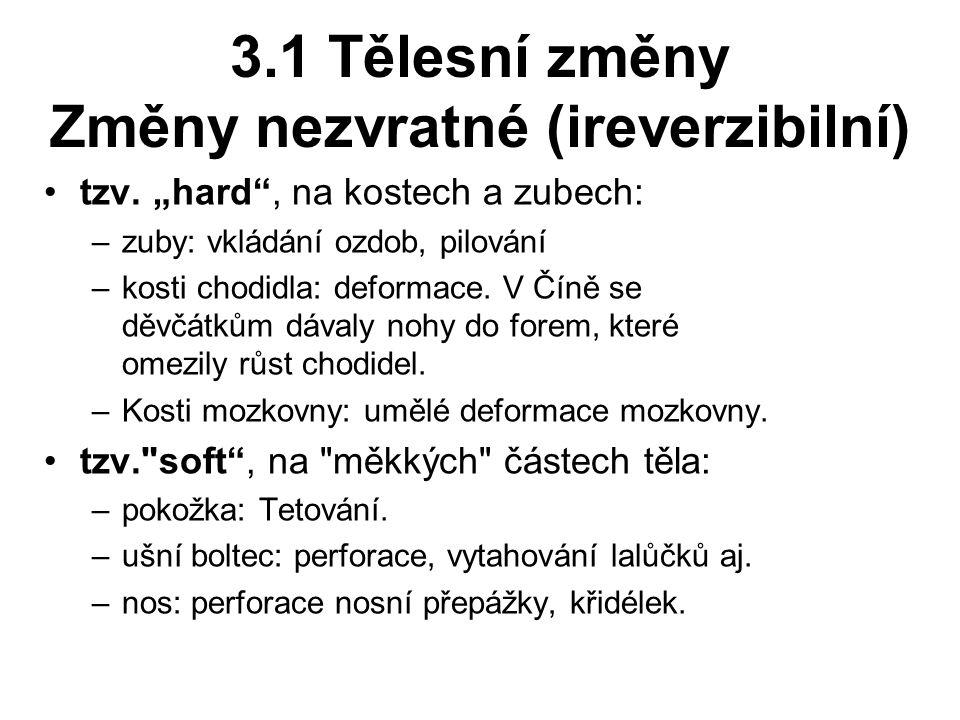 3.1 Tělesní změny Změny nezvratné (ireverzibilní) tzv.