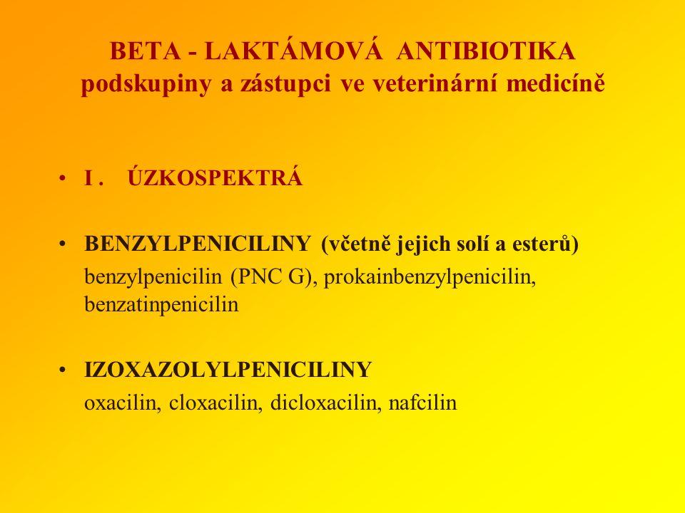 Rezistence značně rozšířená, existují různé mechanismy : 1) enzymatický (beta-laktamázy) 2) redukce cílové struktury 3) narušení průniku přes buněčnou