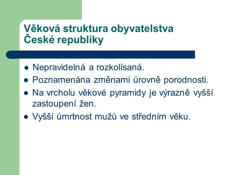Věková struktura obyvatelstva České republiky Nepravidelná a rozkolísaná. Poznamenána změnami úrovně porodnosti. Vyšší úmrtnost mužů ve středním věku.