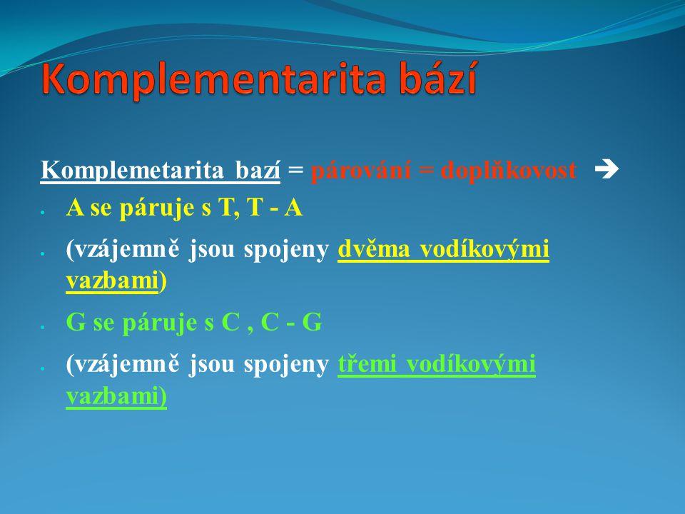 Komplemetarita bazí = párování = doplňkovost   A se páruje s T, T - A  (vzájemně jsou spojeny dvěma vodíkovými vazbami)  G se páruje s C, C - G 