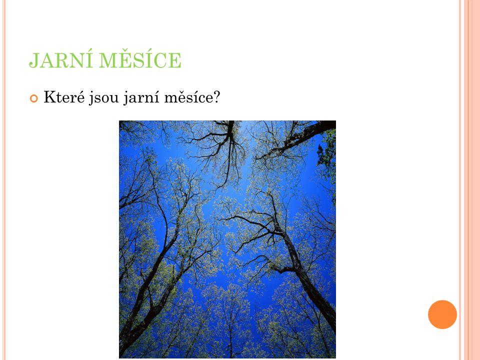 JARNÍ MĚSÍCE Které jsou jarní měsíce?