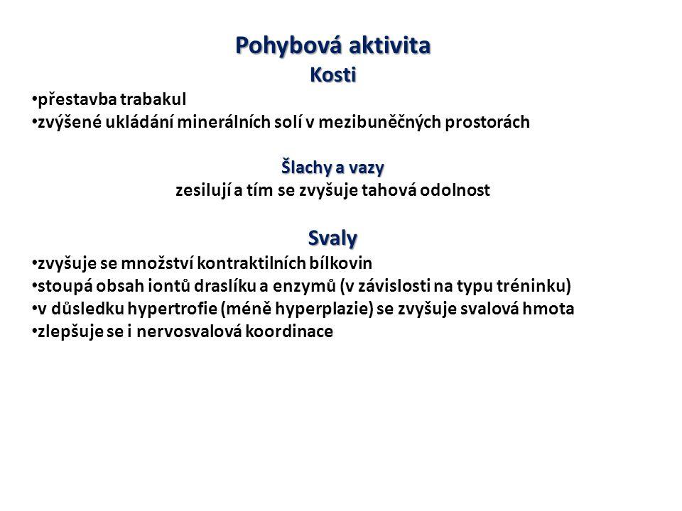 Pohybová aktivita Kosti přestavba trabakul zvýšené ukládání minerálních solí v mezibuněčných prostorách Šlachy a vazy zesilují a tím se zvyšuje tahová odolnostSvaly zvyšuje se množství kontraktilních bílkovin stoupá obsah iontů draslíku a enzymů (v závislosti na typu tréninku) v důsledku hypertrofie (méně hyperplazie) se zvyšuje svalová hmota zlepšuje se i nervosvalová koordinace