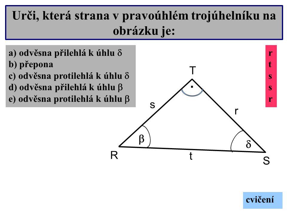 Urči, která strana v pravoúhlém trojúhelníku na obrázku je: O M N.
