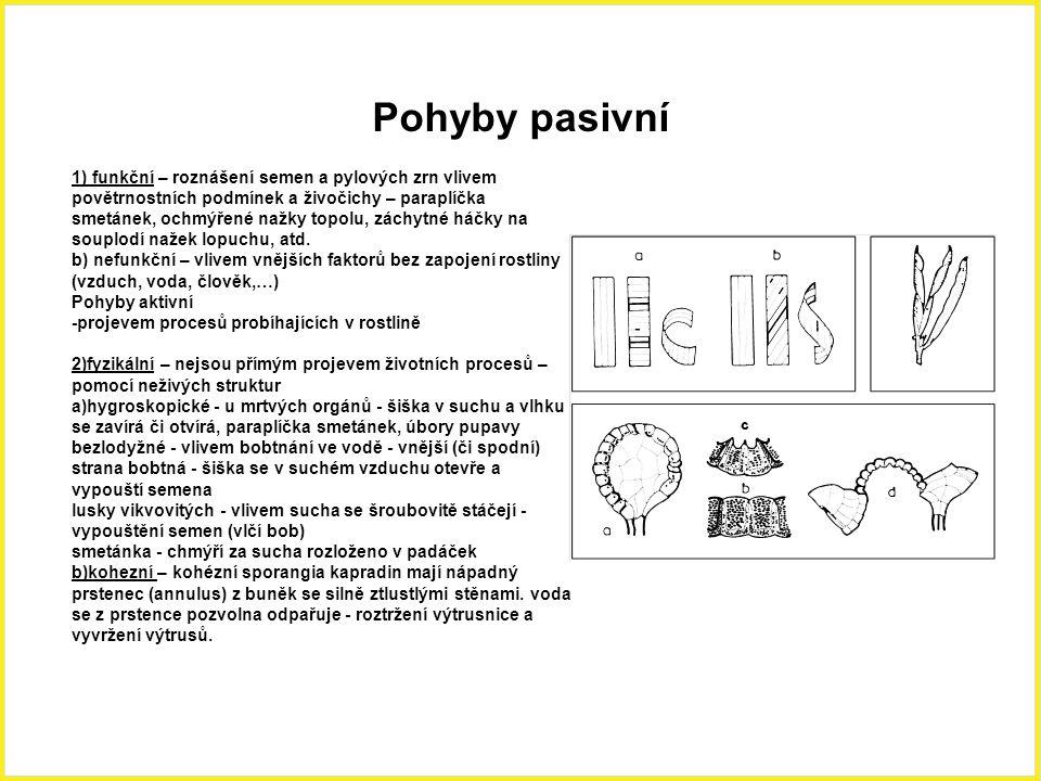 Pohyby pasivní 1) funkční – roznášení semen a pylových zrn vlivem povětrnostních podmínek a živočichy – paraplíčka smetánek, ochmýřené nažky topolu, z