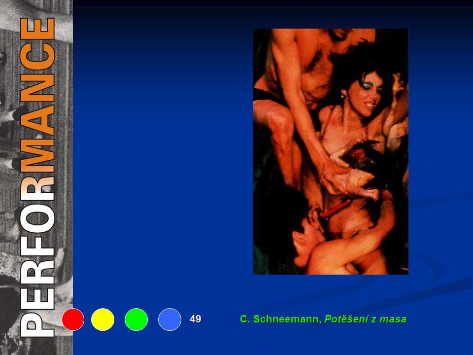49 C. Schneemann, Potěšení z masa