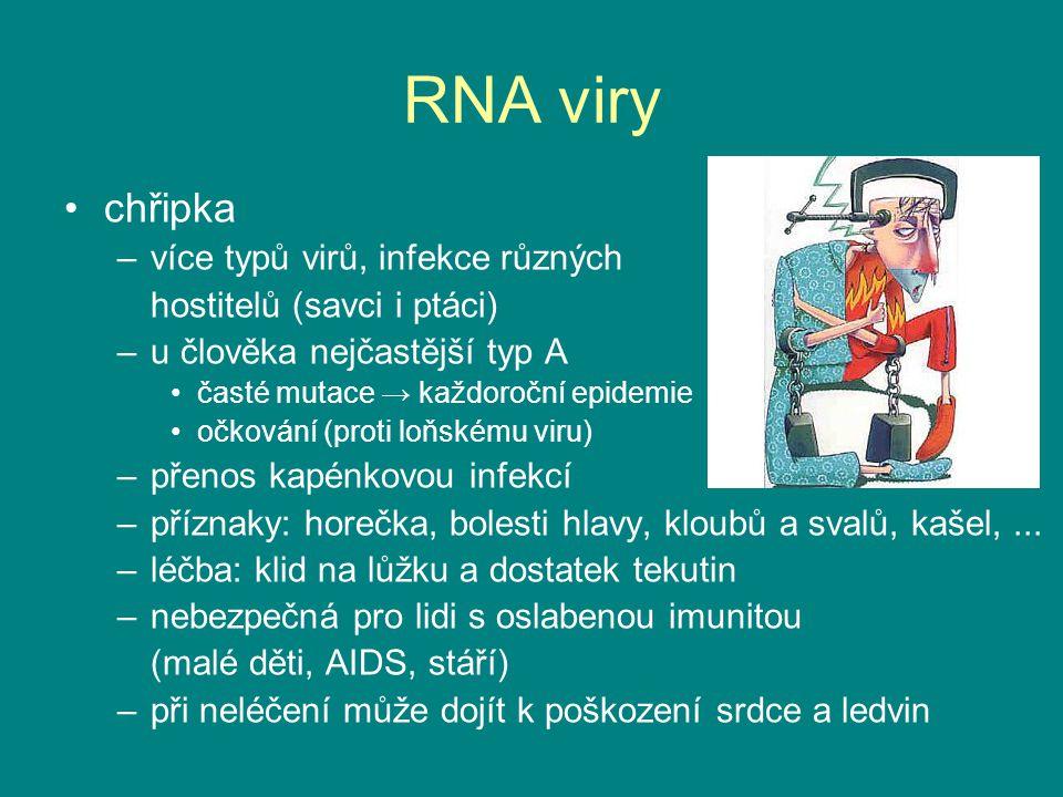 RNA viry chřipka –více typů virů, infekce různých hostitelů (savci i ptáci) –u člověka nejčastější typ A časté mutace → každoroční epidemie očkování (