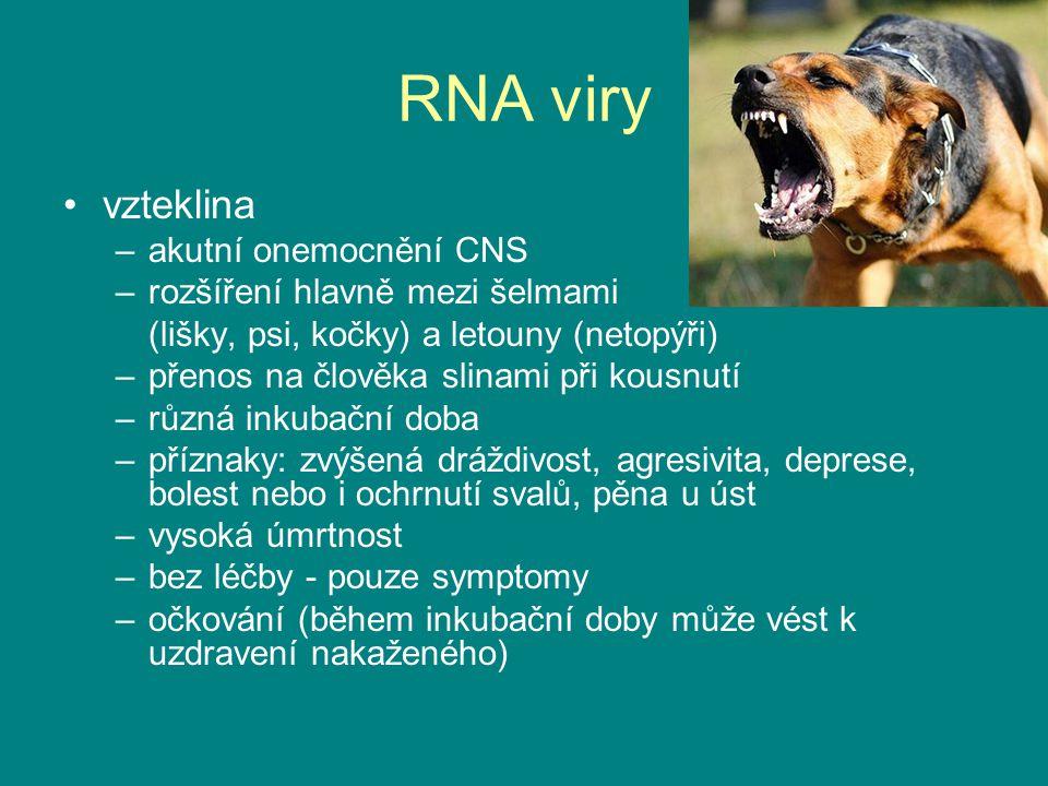 RNA viry vzteklina –akutní onemocnění CNS –rozšíření hlavně mezi šelmami (lišky, psi, kočky) a letouny (netopýři) –přenos na člověka slinami při kousn